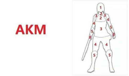 绝地求生枪械伤害力度评测:人物中枪伤害值分析[多图]图片7