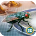 苍蝇模拟器3D手机版