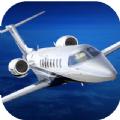 Aerofly FS 2019游戏