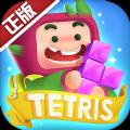 Tetris俄罗斯方块环游记最新版