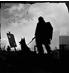 僵尸战争生存法则游戏