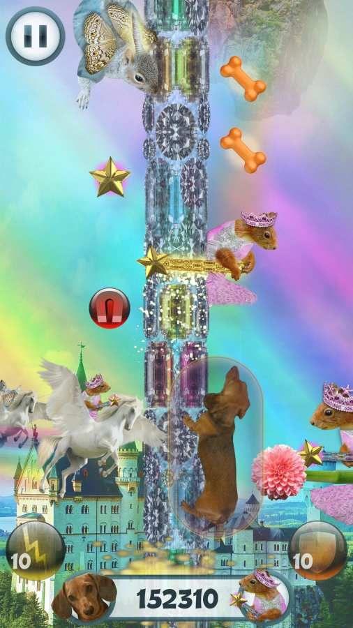 野蛮腊肠犬手机游戏最新版图3: