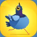 Pigeon Pop安卓版