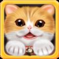 我爱宠物猫游戏