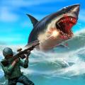 鲨鱼狩猎游戏