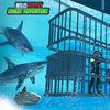 野生鲨鱼追冒险安卓版