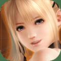 生死格斗5无限手机游戏安卓版下载