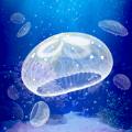 ellyfish Aquarium Free游戏