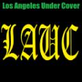GTA5洛杉矶秘密行动官网版