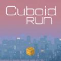 Cuboid Run安卓版