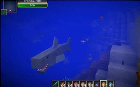 我的世界海洋生物有哪些?海洋版新增海洋生物图鉴一览[多图]图片1