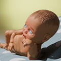 婴儿模拟器官方版