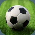 World Football League中文游戏手机版 v1.0