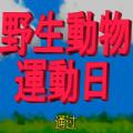 禽兽运动会游戏敖厂长解说全禽兽解锁版下载安装地址 v1.0
