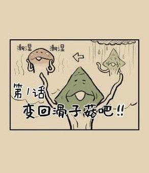 滑子菇逃脱攻略大全:全关卡通关攻略[多图]图片2