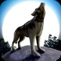 狼队模拟器最新正版