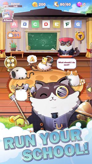 猫咪学校希望破解版图4