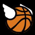 轻浮篮球游戏安卓中文版下载 v1.3.22