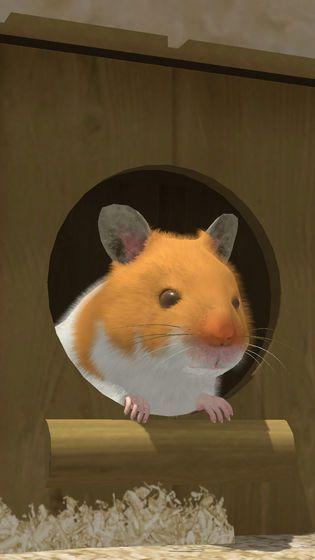 小小仓鼠模拟器官方中文版下载最新版地址图片1