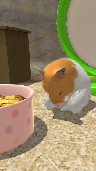 小小仓鼠模拟器官方中文版下载最新版地址图片2