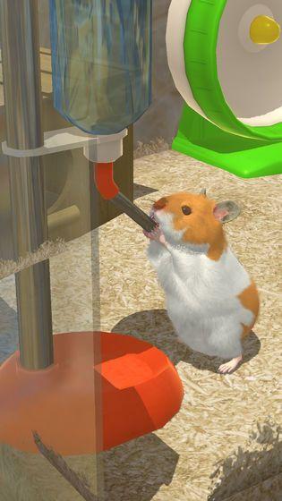 小小仓鼠模拟器官方中文版下载最新版地址图片4