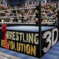 革命摔跤3d中文版