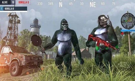 绝地求生猩猩战场游戏官方网站下载安卓版图片3
