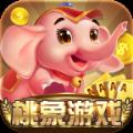 桃象游戏官方网站下载正式版 v1.0