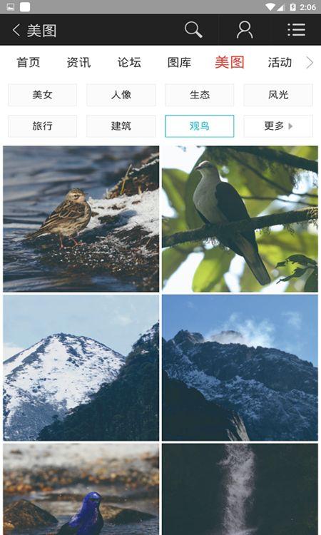 蜂鸟图库APP安卓版下载图片2