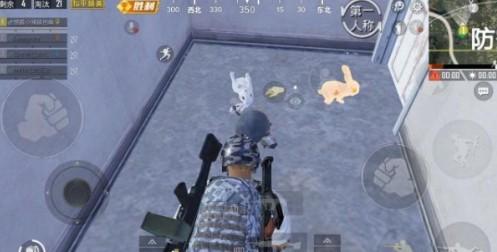 和平精英白兔子和金兔子哪个好?白兔子和金兔子区别对比[多图]