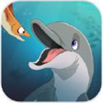 我是一只海豚