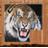Tiger拼图
