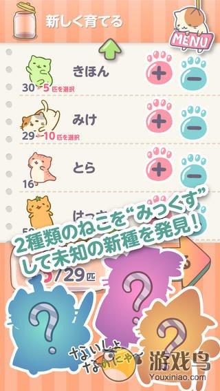 猫猫栽培图3: