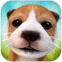 虚拟宠物狗2015