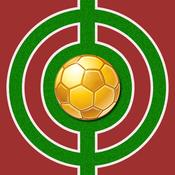 足球大师:世界杯之旅