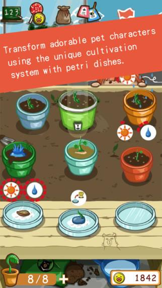 原来我种的不是植物图1: