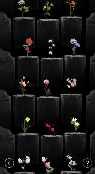 植物生长图2: