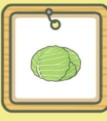 旅行青蛙蜗牛说的什么 蜗牛吃什么东西[多图]图片2